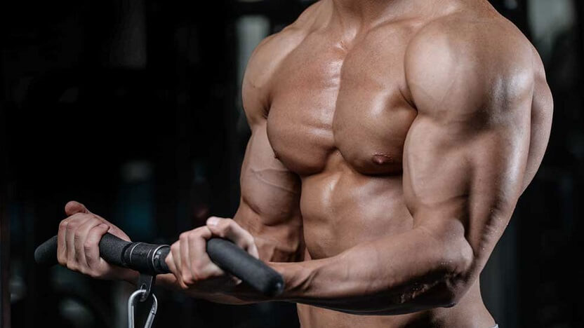 Moves for Your Biceps
