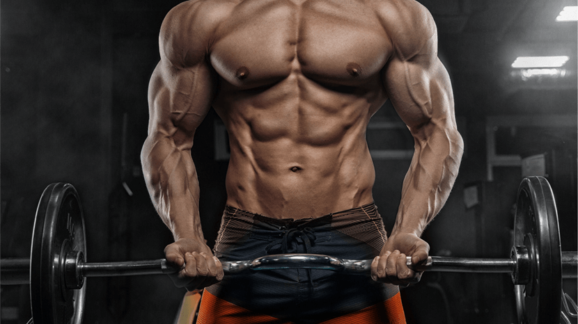 Chest Workouts for Building Muscle